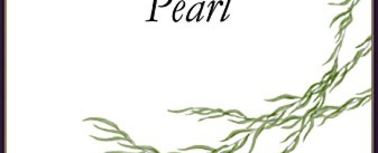 Book Release: A SHIP OF PEARL by Adela Crandall Durkee
