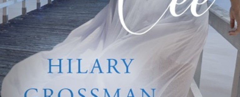 BOOK RELEASE DAY: Plan Cee by Hilary Grossman